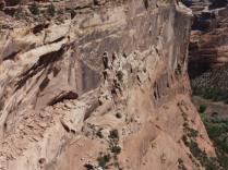 6-4-13 CO33 - Canyon de Chelly