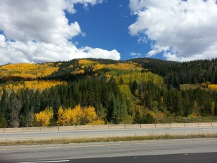 Vail, Colorado in mid Autumn - unexpected glory!!!!