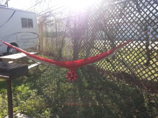Dave found a way to hang my hammock!!!
