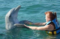 Dolphin hugs are cool too