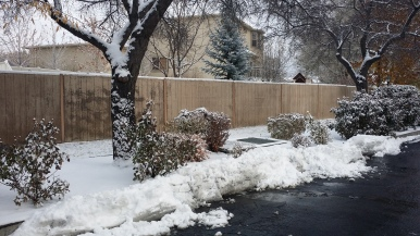 2015-11-28-utah-thanksgiving-snow