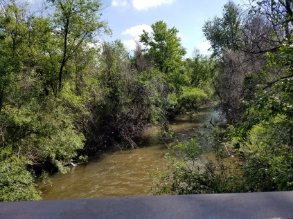 2016-06-01-bear-valley-bike-path-2