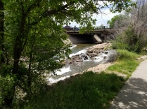 2016-06-03-bear-valley-bike-path-1